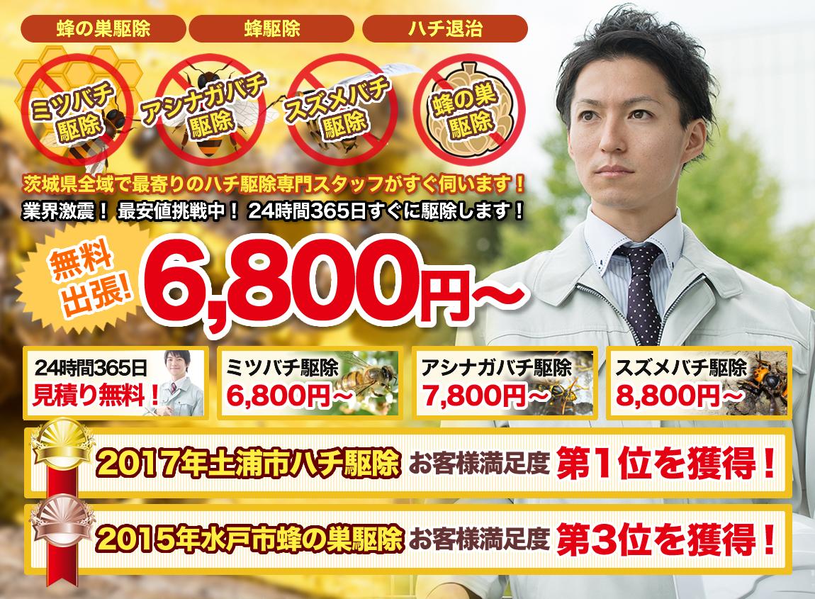 茨城・埼玉・千葉のハチ駆除なら蜂のトラブル救助隊
